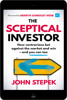 Cover of The Sceptical Investor by John Stepek