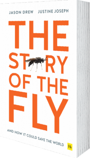 Cover of The Story of the Fly by Jason Drew